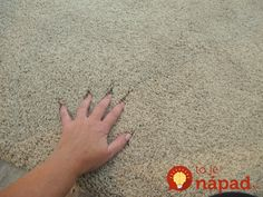 Fabrics, Fixtures and Fluff {Bedroom Revamp Update}. Home Depot Carpet, Wall Carpet, Patterned Carpet, Carpet Design, Home Hacks, Kids And Parenting, Diy And Crafts, Pure Products