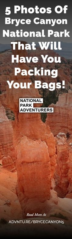 Bryce Canyon, located a little over an hour northeast of Zion National Park is a stunning display of erosion, redrock, and hoodoos. 5 Photos Of Bryce Canyon National Park That Will Have You Packing Your Bags!  - http://advntu.re/brycecanyon5