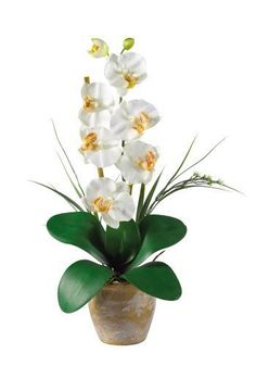Nearly Natural 1016-CR Phalaenopsis Silk Orchid Flower Arrangement, Cream