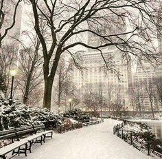 Winter ❄️ in Central Park  So beautiful..... ➖➖➖➖➖➖➖➖➖➖➖➖ 🔥👉 FOLLOW US 👈🤓😉🙄👈 @amazingdestinationsresorts for more amazing posts like this! 👈🔥 ➖➖➖➖➖➖➖➖➖➖➖➖ 📷 Photo credits - ????👏🏼👏🏼👏🏼 ➖➖➖➖➖➖➖➖➖➖➖➖ ✔TAG your best photos with #amazingdestinationsresorts for a chance to be feature!! ✈️ ➖➖➖➖➖➖➖➖➖➖➖➖ @taylorswift @cristiano @neymarjr @kendalljenner @leomessi @nickiminaj @kaka @mileycyrus @katyperry @harrystyles @natgeo @kevinhart4real @ivetes@kyliejenner @therock @ddlovato…