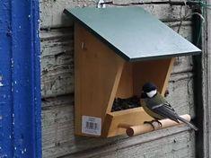 Bird House Kits Make Great Bird Houses Homemade Bird Houses, Homemade Bird Feeders, Bird Houses Diy, Wood Bird Feeder, Bird House Feeder, Table En Bois Diy, Diy Table, Wood Table, Bird House Plans