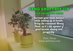 Looking for something great to increase your HEALTH with BANK Balance?  This #FengShuiAbundantTip has that for you!  For more specific Feng Shui Consultation- Get the Home Consultation for Feng Shui Now!  Prof. Prem (Feng Shui Consultant)  www.daPrem.com #FengShui #Consultant #Fengshuicoach #Fengshuiexpert #FengShuiHome #FengShuifreeTip #FreeTips #ProfessionalConsultant #Lifecoach #Bookslot #ContactNow #Affordable #Discounts #LifecoachProfPRem #Mentor