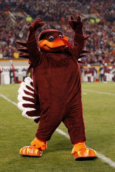 Virginia Tech -- Hokie Bird