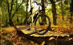 I have come with an aim to help you spot the best mountain bike you can access from the market, at a cost below 500 dollars. I believe we all want to maximize on quality, but at the same time minimize the cost. That is exactly what I am placing on the table for you today; the best mountain bikes under 500 dollars and tips on how to maximize quality and at the same time minimize cost. #mtb #mtbreview #mountainbike #mountainbikereviews #mtbunder500 #bicycle #MTBreviews