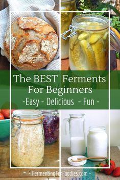 A list of the top recommended types of ferments for fermenting newbies. These fermentation recipes are easy, reliable and delicious. Try fermenting vegetables, dairy, sourdough and more! Fermentation Recipes, Canning Recipes, Probiotic Foods, Fermented Foods, Kefir, Kombucha, Texas Roadhouse, Nutrition, Le Diner