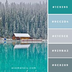 Snow-covered Trees, Body of Water, and House Color Palette – Ave Mateiu Color Palette For Home, House Color Palettes, Grey Palette, Green Colour Palette, Color Palate, Teal Color Palettes, Couleur Hexadecimal, Grey Color Pallets, Pallet Tree Houses