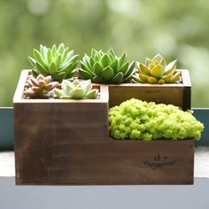 flower pot Cheap floor granules, Buy Quality floor led directly from China pot ceramic Suppliers: Wooden Garden Planters, Flower Planters, Ceramic Planters, Backyard Planters, Wood Shop Projects, Small Wood Projects, Letter Planter, Diy Plant Stand, Garden In The Woods