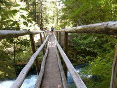 Foot bridge along McKenzie Trail, Oregon