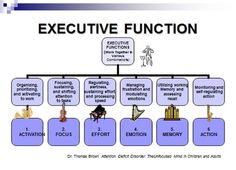 COGNITION Executive Function
