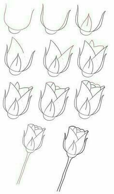 Easy roses to draw how do you draw a rose easy steps flower easy rose drawing roses drawing tutorial easy rose flower drawing easy video Drawing Lessons, Drawing Techniques, Drawing Tips, Drawing Sketches, Drawing Ideas, Bird Drawings, Easy Drawings, Pencil Drawings, Easy Flower Drawings