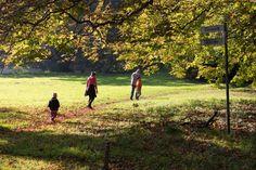 Herbst an der Ostsee   Wegweiser im hersbtlichen Park von Putbus (c) Frank Koebsch (2)