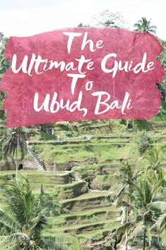 Our Bali Trip: Ubud - where to stay, what to see, how to spend your time and what restaurants can't be missed in Ubud, Bali, Indonesia!