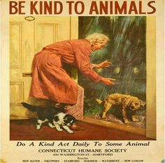 Be kind to animals - be vegan