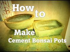 How to make cement Bonsai pots Cement Garden, Cement Art, Cement Planters, Cement Crafts, Bonsai Garden, Garden Pots, Indoor Garden, Bonsai Tree Care, Bonsai Trees