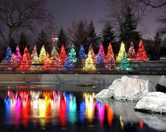 Five Ways to Celebrate the Holidays Outdoors in Chicago - ChooseChicago.com