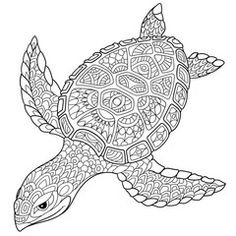 Вектор: Zentangle stylized cartoon turtle, isolated on white background. Hand drawn sketch for adult antistress coloring page, T-shirt emblem, logo or tattoo with doodle, zentangle, floral design elements.
