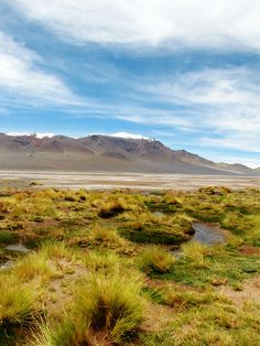 Salar de aguas calientes, San Pedro de Atacama, Chile