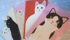 lot 5 cartes + enveloppes VOEUX ANNIVERSAIRE BONNE ANNEE CHATS