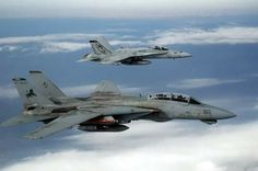 "F-14D VF-213 ""Black Lions"""