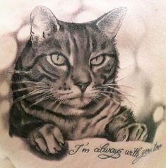 tatuagem gato - Pesquisa do Google