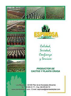 Anuncio 1/1 Viveros Espinosa