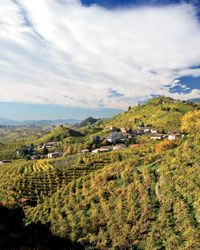 Italian Wine: Driving the Prosecco Road - Articles - Departures