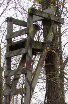 deer stand building plans | This is my first ladder stand, I have no plans, just the picture.