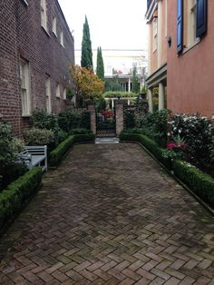 A Charleston Courtyard. The Houses Stand Close Together, And These Little  Green Or Paved