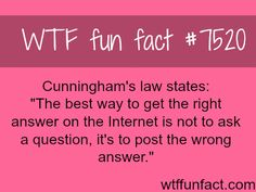 How to get the right answer on the internet - WTF FUN FACTS