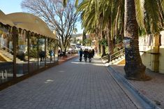Promenade at Igalo during days of mimoza in February,