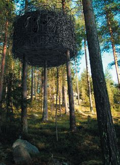the Tree Hotel in Sweden. i want to build this in my garden, i've got the room. Cabana, Sweden House, Tree Hut, Cool Tree Houses, Tiny Houses, Sensory Garden, Vacation Home Rentals, Vacation Destinations, In The Tree