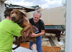 Greg Cook and Coco, Coco survived a cat 5 tornado in Ala