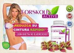Forskolin (cAMP) helps your body burn fat by stimulating the production of enzymes and hormones that fuel your metabolism and burn excess calories. Home Remedies, Health Fitness, Healthy, Shop, Desserts, Productivity, Chocolate Mouse Cake, Goals In Life, Workout Abs