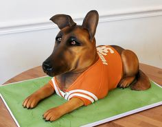 Texans jersey German Shepard dog cake | by Oakleaf Cakes