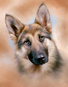 A digital oil painting of a #GermanShepherd Alsation #Dog