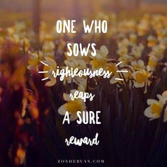 He who sows righteousness reaps a sure reward. Proverbs 11:18 Proverbs 11, Start The Day, Verse Of The Day, Righteousness, Words Of Encouragement, Happy Sunday, Wicked, Wisdom, Writing
