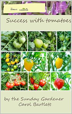Success with Tomatoes: Complete concise guide to growing tomatoes by [Bartlett, Carol]