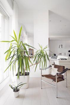 Квартира в Генуе | Про дизайн|Сайт о дизайне интерьера, архитектура, красивые интерьеры, фотографии интерьеров, декор, стилевые направления в интерьере, интересные идеи и хэндмейд
