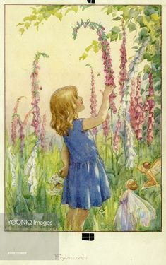 Girl with Foxgloves and Fairies - Illustration from the book 'Magic Flowers'. Margaret Tarrant