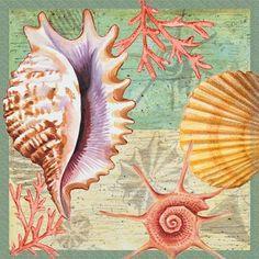 Sea Shell Harmony ~ by Elena Vladykina Sea Pictures, Nautical Art, Nautical Prints, Steampunk Design, Seashell Art, Sea Art, Coastal Art, Ocean Themes, Decoupage Paper