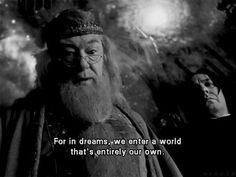 With all due respect, Professor, you are mistaken. Dreams and dreamworlds can be shared. Dumbledore Quotes, Movie Quotes, True Quotes, Movies And Tv Shows, Deathly Hallows, Fictional Characters, Harry Potter Friends, Harry Potter Images, Hp Harry Potter