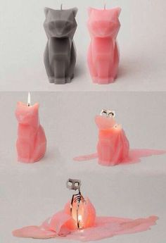 Cat Candle with a skeleton. Kind of cool, kind of creepy. (Cool Diy Inventions) Cool Ideas, Home Decor Accessories, Decorative Accessories, Cat Candle, Hipster Grunge, Cool Inventions, Crazy Cat Lady, Cool Stuff, Cool Gifts