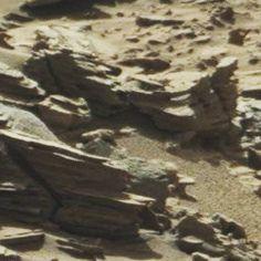 """Gefällt 19 Mal, 1 Kommentare - Mars Anomalien (@lilithonmars) auf Instagram: """"MARS Fahrzeuge, Vogelkopf mit Rad und Fischkopf darüber #mars #marsanomalien #space #unglaublich…"""""""