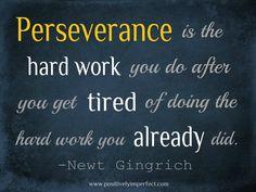 perserverance!!