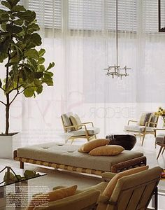 mid-century modern daybed: danish chairs white space with fiddle leaf fig via spruce decor. Home Interior Design, Interior Architecture, Mid Century Modern Daybed, Living Room Designs, Living Spaces, Daybed Room, Best Sofa, Home Decor Inspiration, Decoration