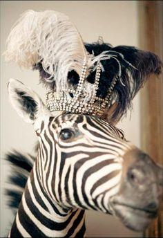 A crown for Memphis.