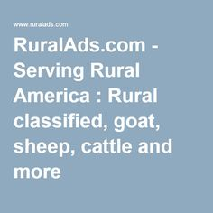 RuralAds.com - Serving Rural America : Rural classified, goat, sheep, cattle and more