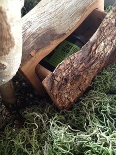 Sometimes a log in the woods is more than just a log. Check out this geocache:  $32.99 #coolcaches #thingsyoufindinthewoodsthatmostpeopledontfind