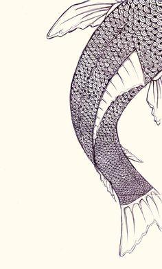 Fish scales - close up illustration