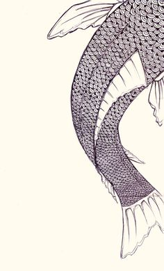 1000 ideas about koi fish drawing on pinterest japanese for Koi fish scales